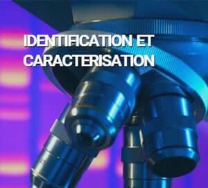 bactup identification caracterisation